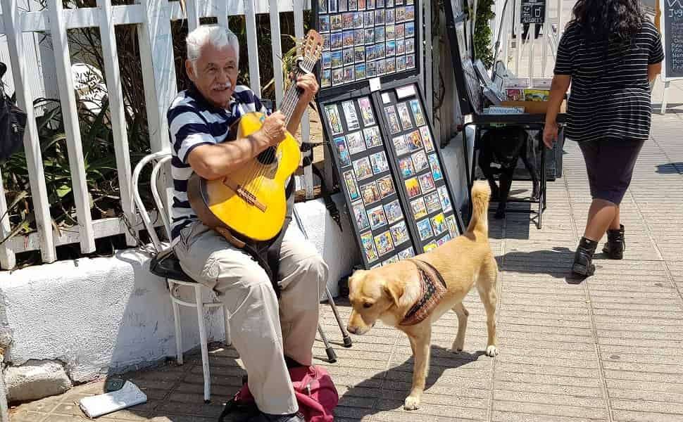 Туры в Чили. Вальпараисо. Уличный музыкант