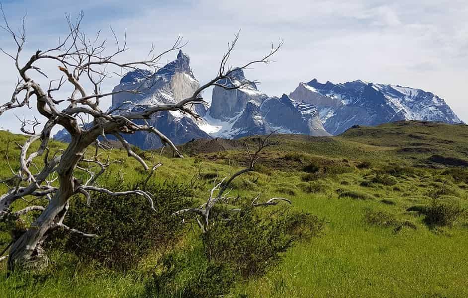 Экскурсии в Патагонию. Парк Торрес дель Пайне