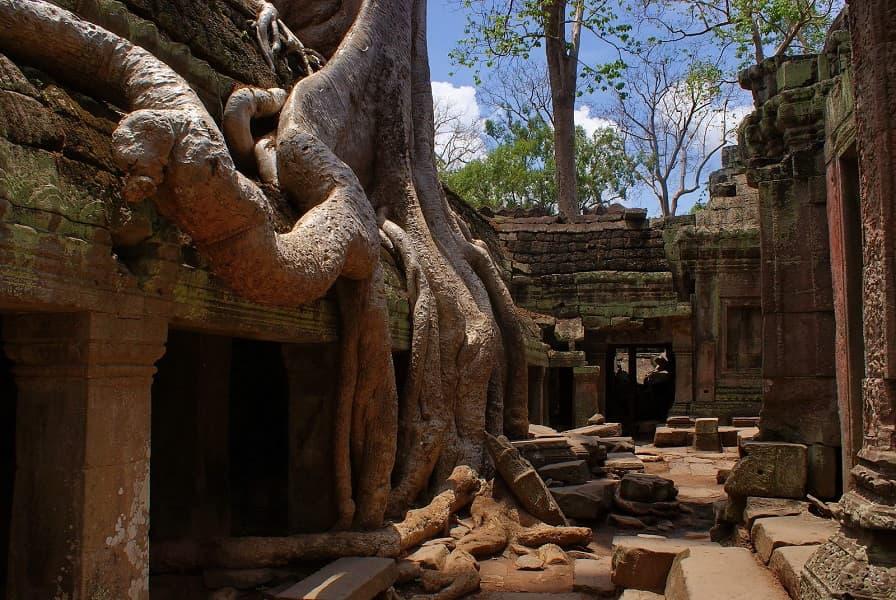 Экскурсионные туры в Камбоджу. Сием Риеп. Храм Та Пром