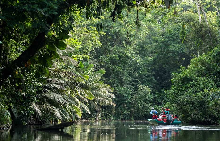 Экскурсионные туры в Коста Рику.  Каналы Парка Тортугеро