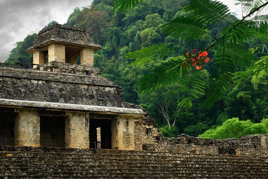 Экскурсионные туры в Мексику. Паленке. Пирамиды майя фото