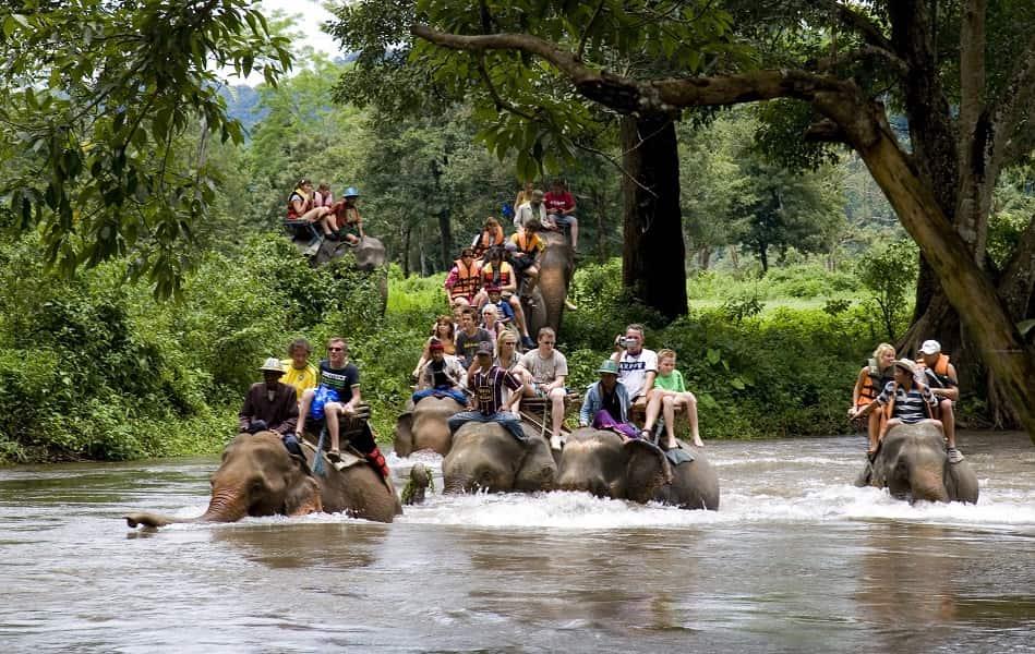 Экскурсионные туры в Тайланд. Треккинг на слонах
