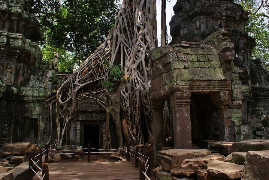 Групповые туры в Камбоджу. Сием Риеп. Та Пром