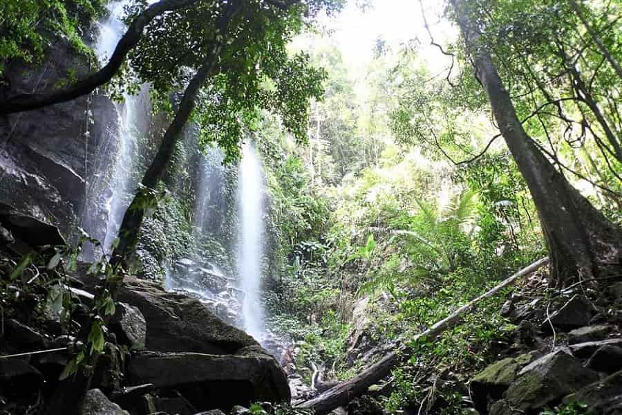 Тур в Малайзию из Украины. Национальный парк Белум.