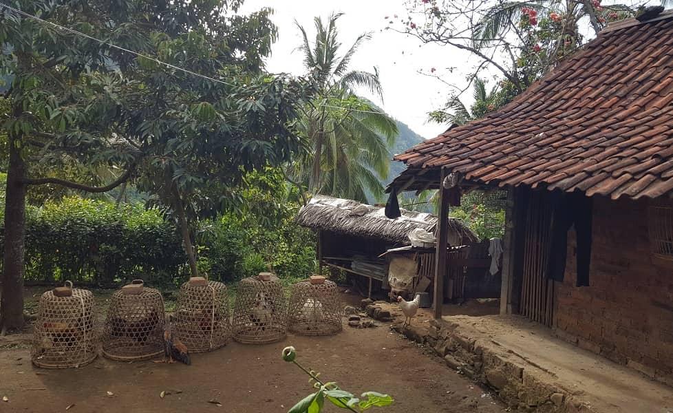Отдых в Индонезии. Бали. Домик местных жителей