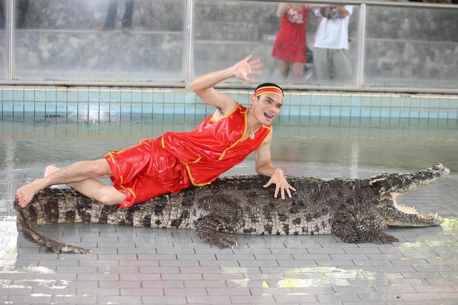 Отдых в Таиланде. Шоу крокодиов в Паттайе фото