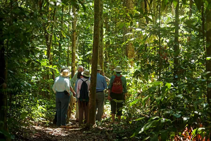 Перу. Поездка в джунгли Амазонки. Пуэрто Мальдонадо