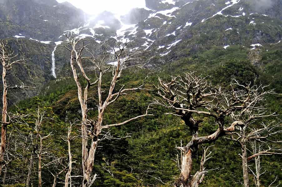 Путешествие по Чили. Национальный парк Кэулат