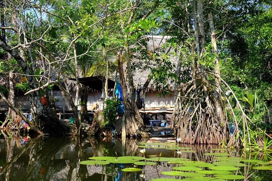 Путешествие в Гватемалу. Рио Дульсе. Дом местных жителей