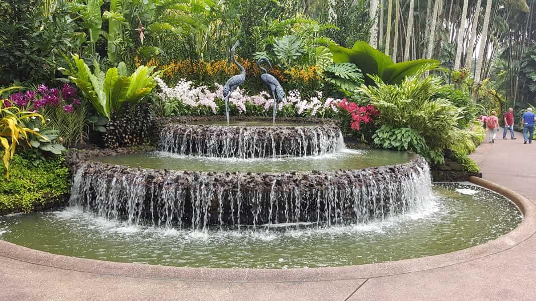 Путевки в Сингапур. Ботанический сад фото