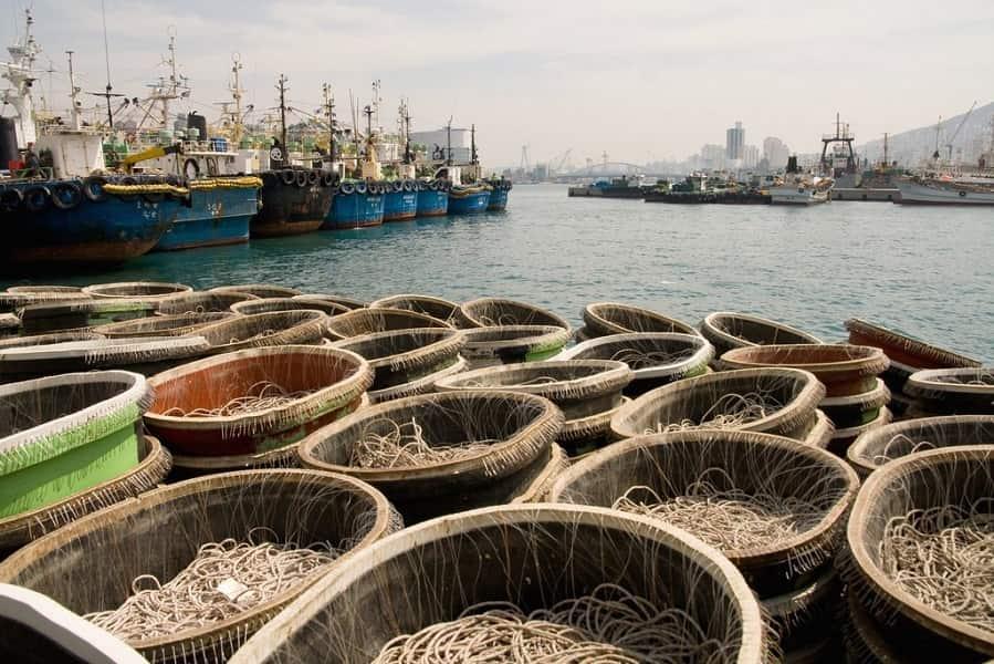 Тур Поездка в Корею. Пусан. Рыбачий порт