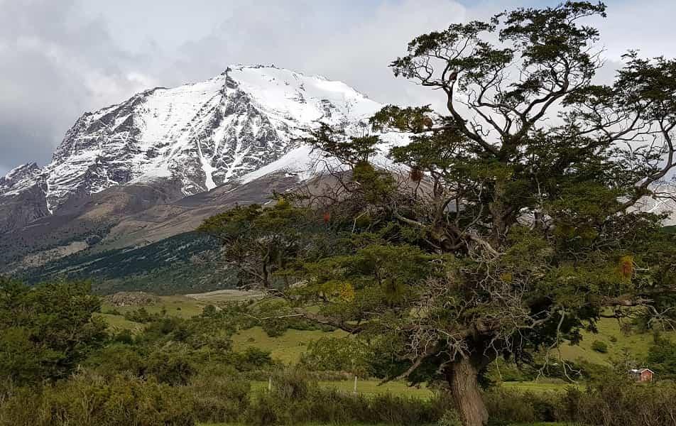 Поездка в Чили. Трек в парке Торрес дель Пайне