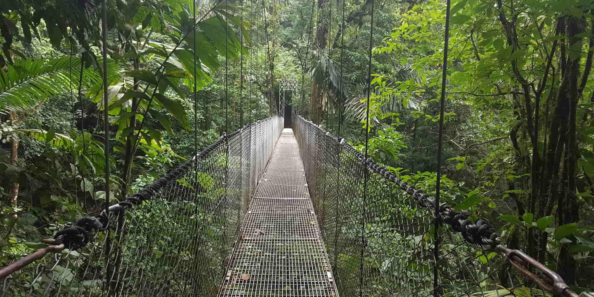 Тур в Коста Рику. Подвесные мосты