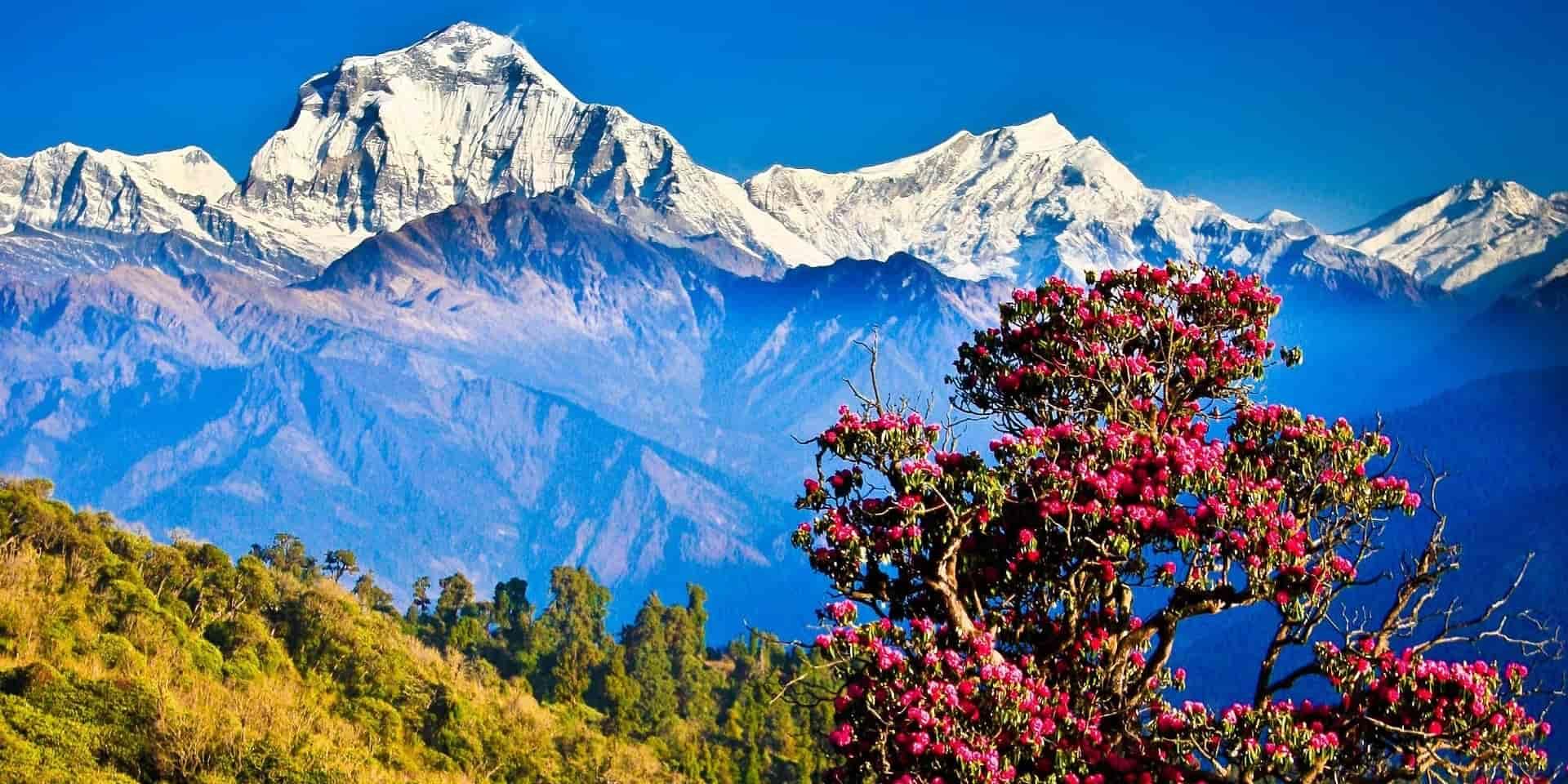 Тур в Непал. Горы фото
