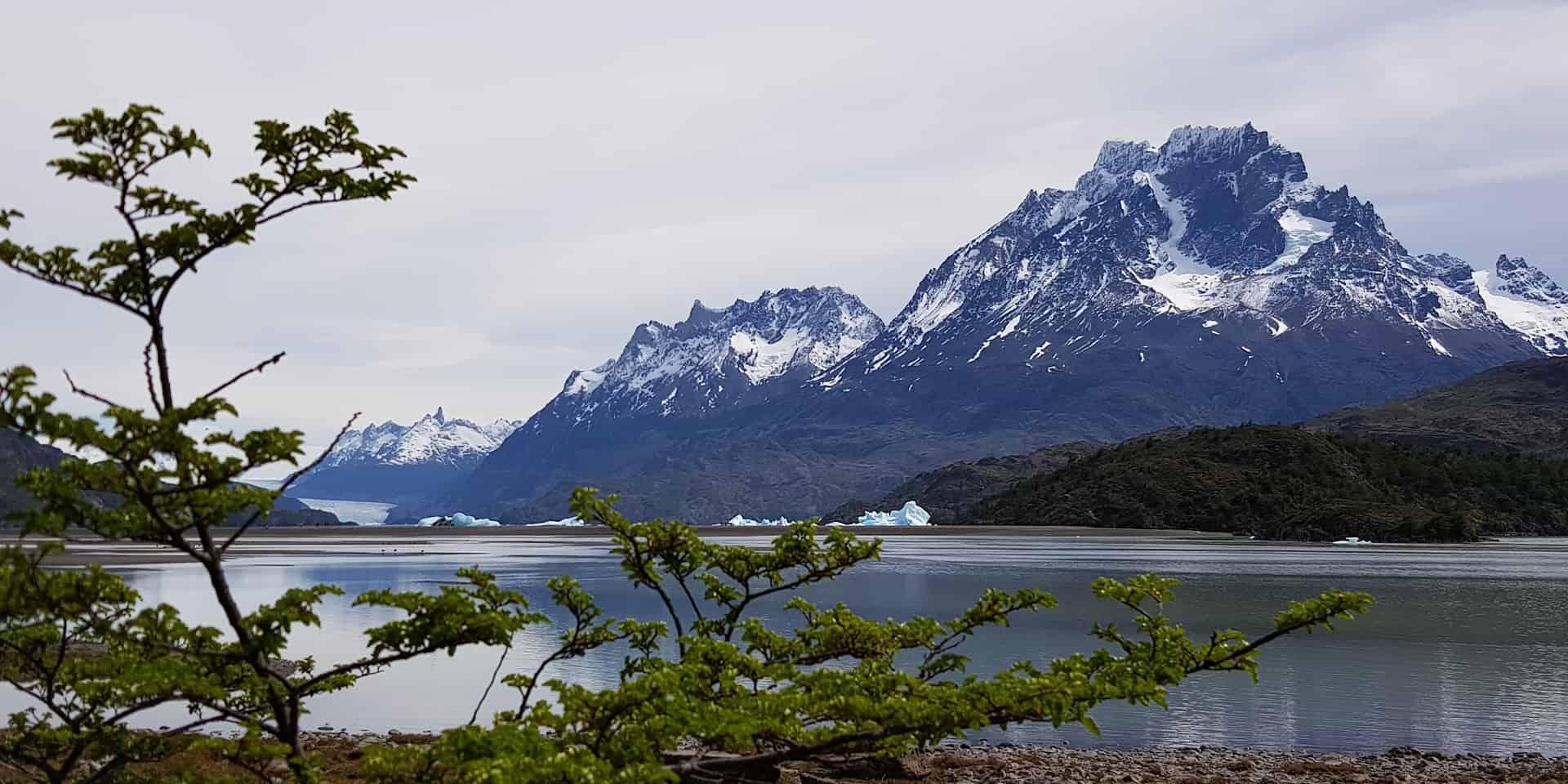 Чили. Патагония. Cерое озеро - lago grey