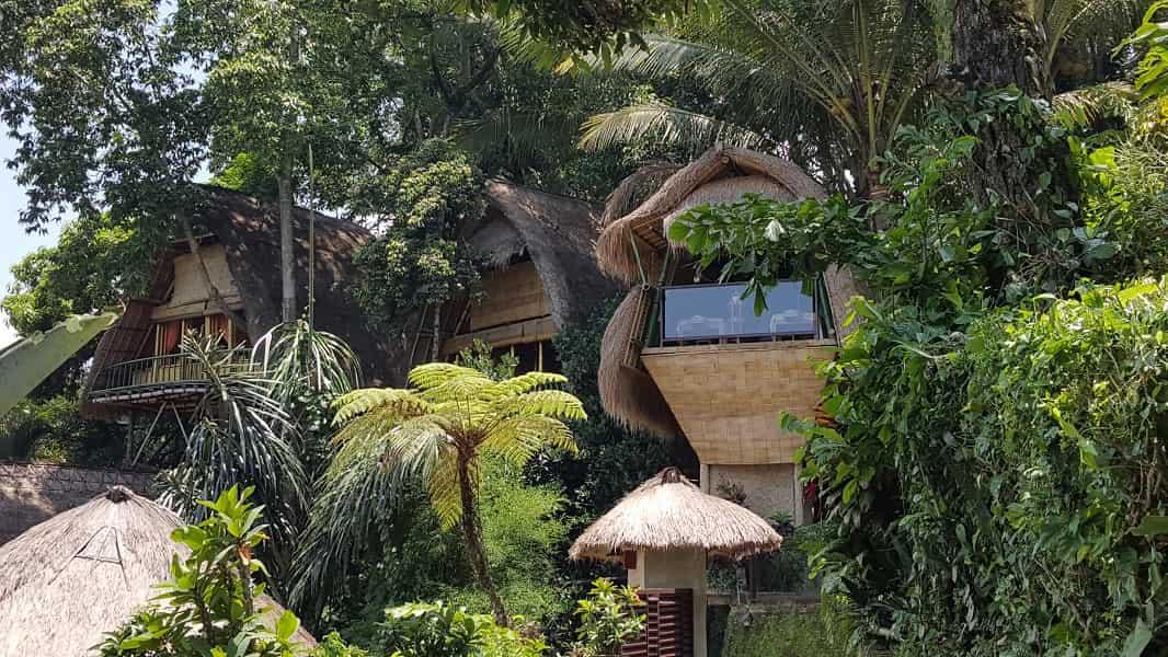 Туры на Бали. Отель в Убуде фото