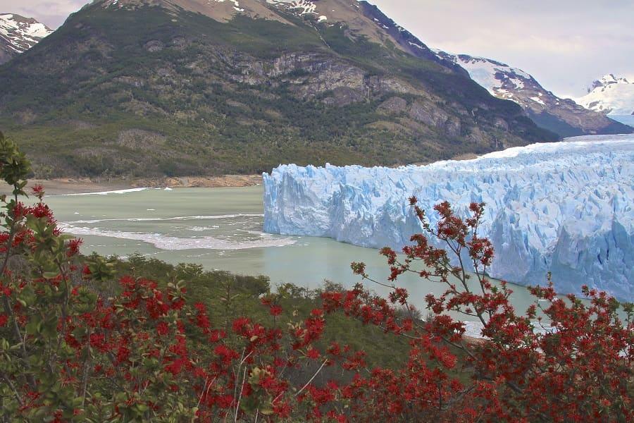 Туры в Аргентину. Эль Калафате