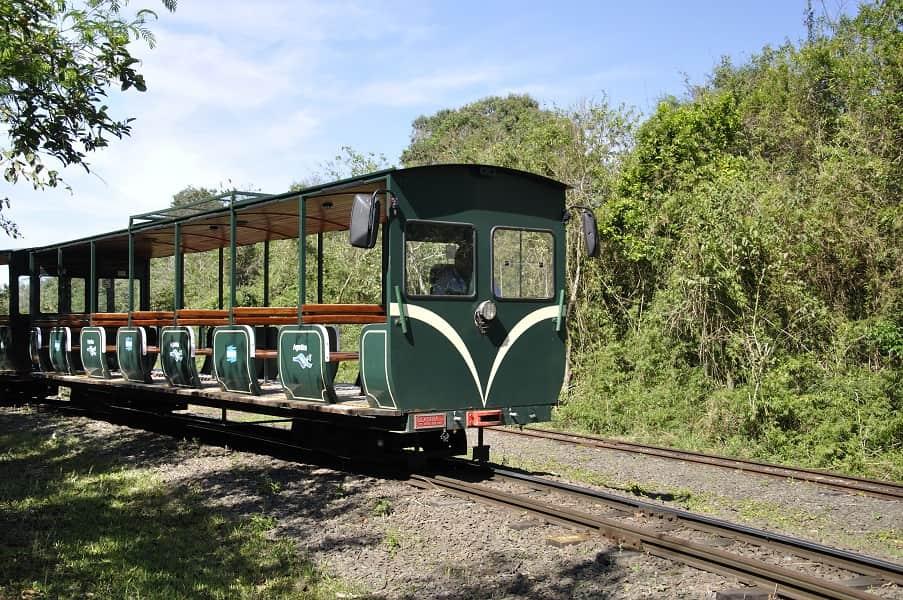 Туры в Аргентину. Поезд в парке Игуасу