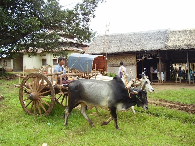 Туры в Бирму. Озеро Инле. Дорога в Ин Дейн