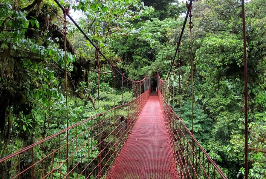 Туры в Коста Рику. Подвесной мост в  Монтеверде