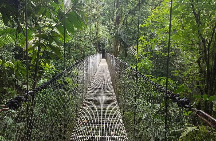 Туры в Коста Рику. Подвесной мост в парке Ареналь
