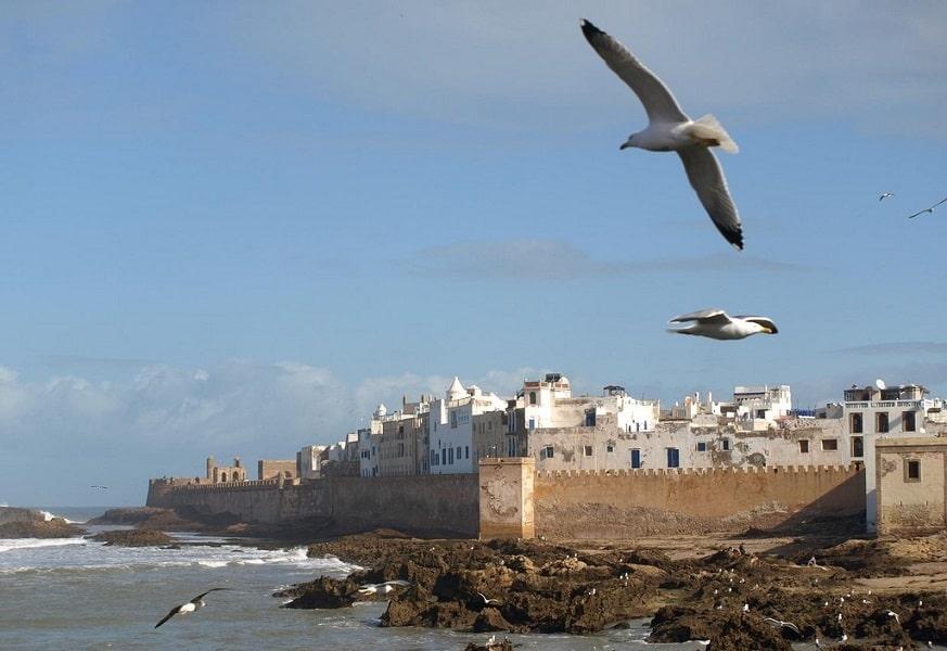 Туры в Марокко. Эссувейра фото города