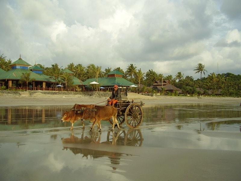 Туры в Мьянму. Нгве Саунг. Жизнь местных крестьян