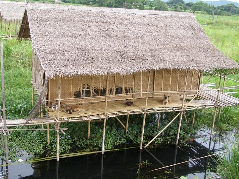 Туры в Мьянму. Озеро Инле. Домик на воде