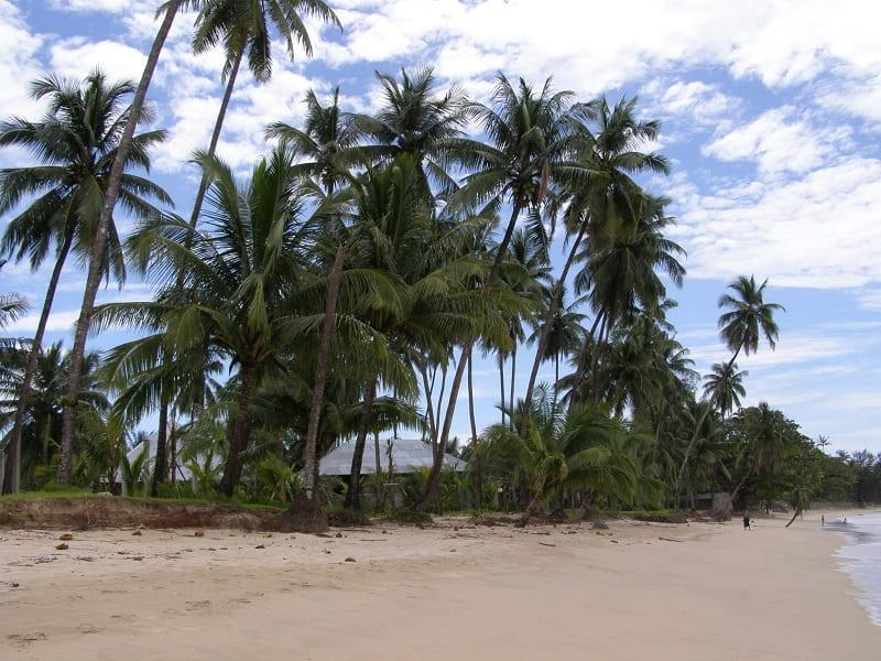Туры в Мьянму. Пляж Нгапали фото
