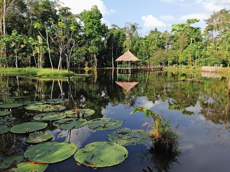 Амазонка тур в Перу фото