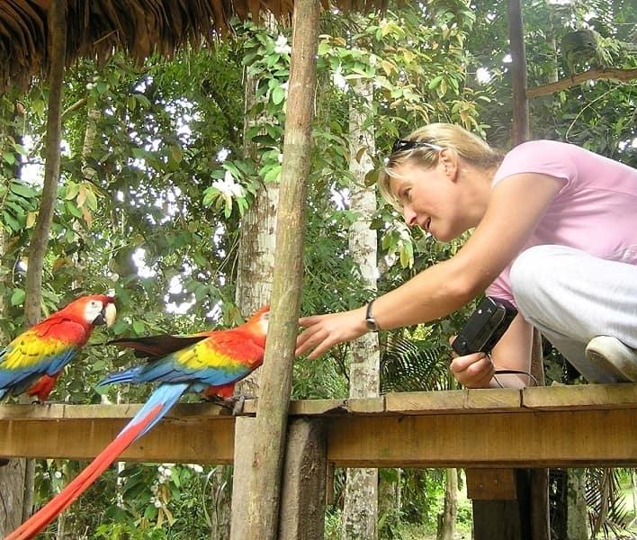 Леса Амазонки Перу лоджии