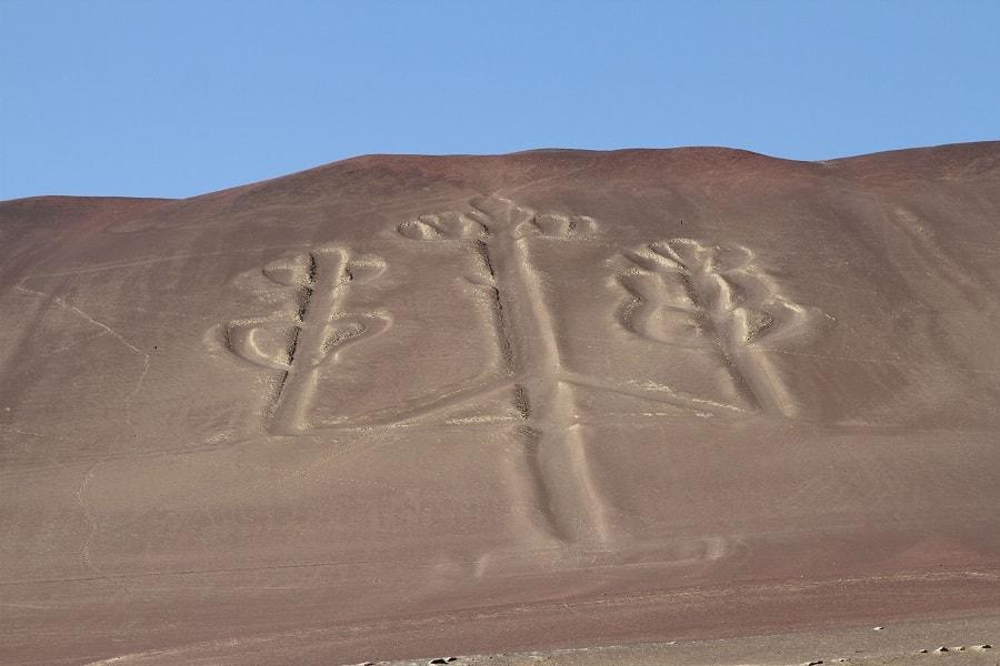 Национальный парк Паракас Перу фото