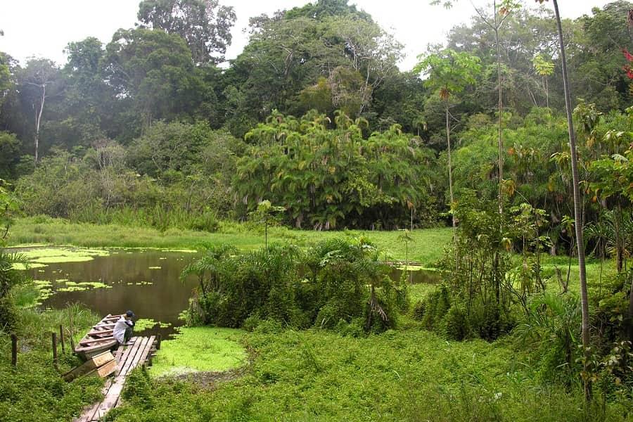 Амазонка туры Перу лодж Фото