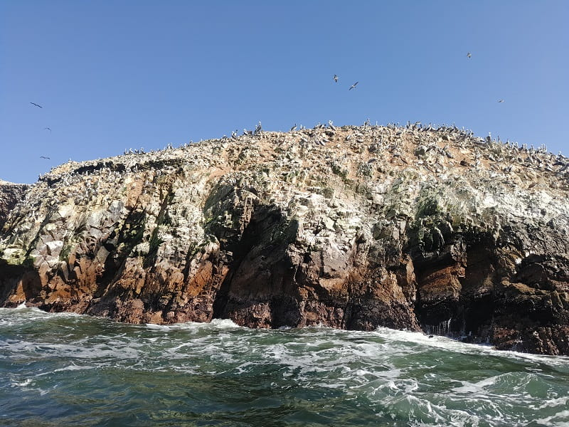 Перу отдых на островах Байестас