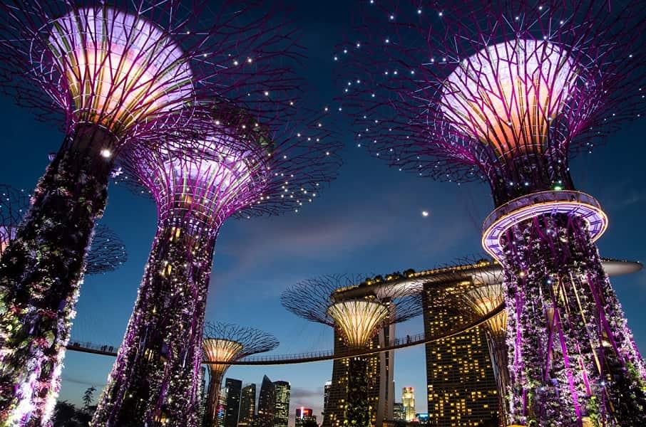 Туры в Сингапур. Шоу в Грине гарденс