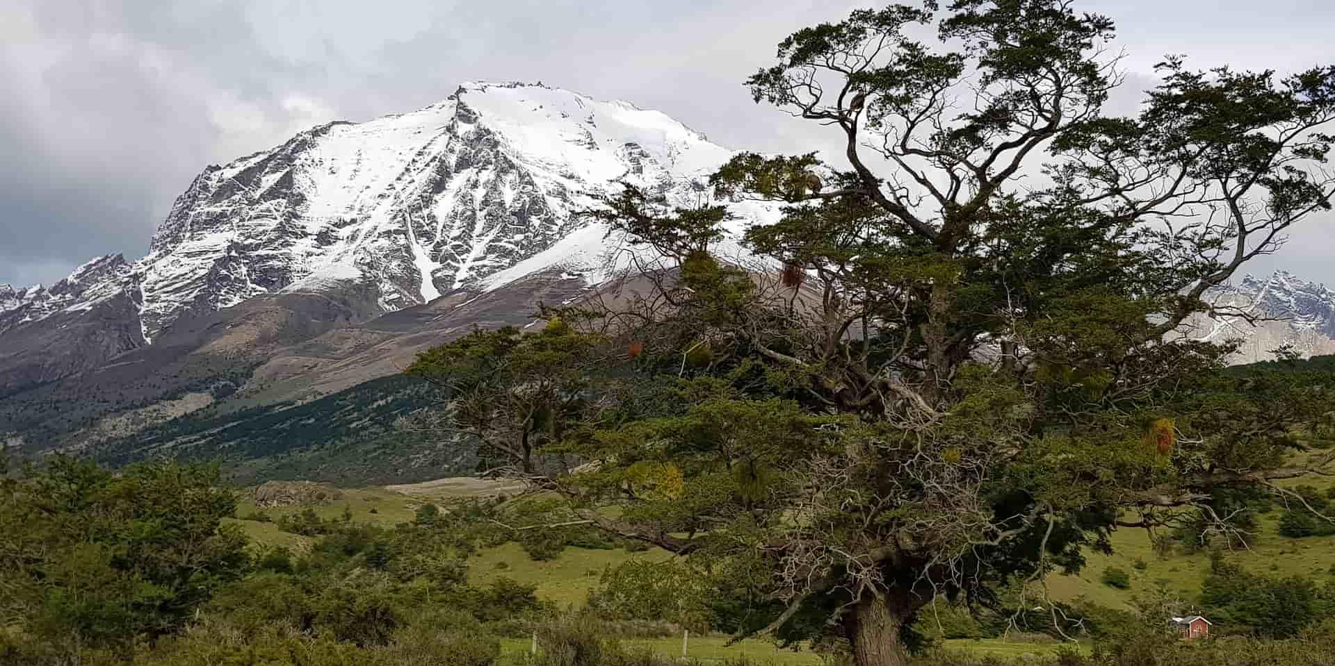 Чили. Национальный парк Торрес дель Пайне